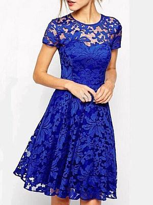 Round Neck  Patchwork  Lace Skater Dress