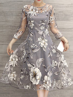 Crew Neck  See Through  Floral Printed Skater Dresses