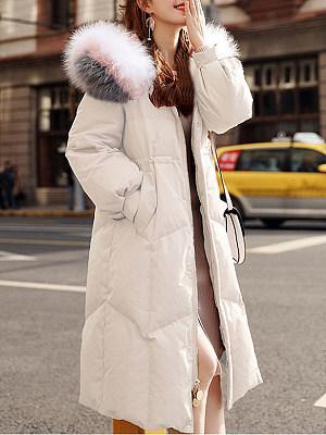 Hooded Plain Coat, 9737317