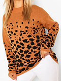 Image of Casual Modern Long Sleeve Leopard Print Sweater